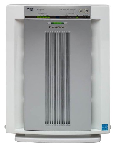 WAC5500 True HEPA Air Cleaner