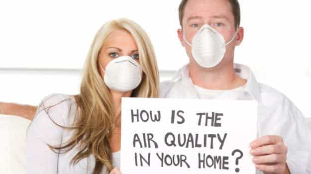 natural ways to purify home air