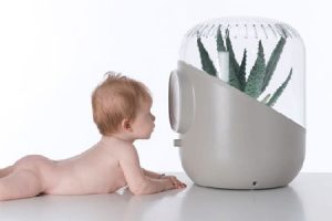 Best Humidifier for Babies Reviews