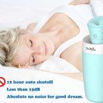 PrettyCare Ultrasonic Cool Mist Humidifier