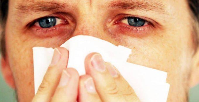 ways to prevents mold allergy indoor