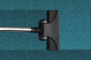 steam mop options for cleaning carpet
